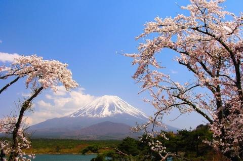 Tour ghép Nhật Bản Tokyo Hakone Fuji